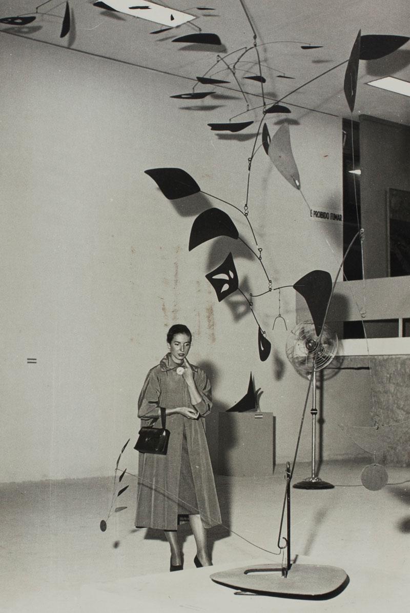 Visitante na Sala Especial: Alexander Calder