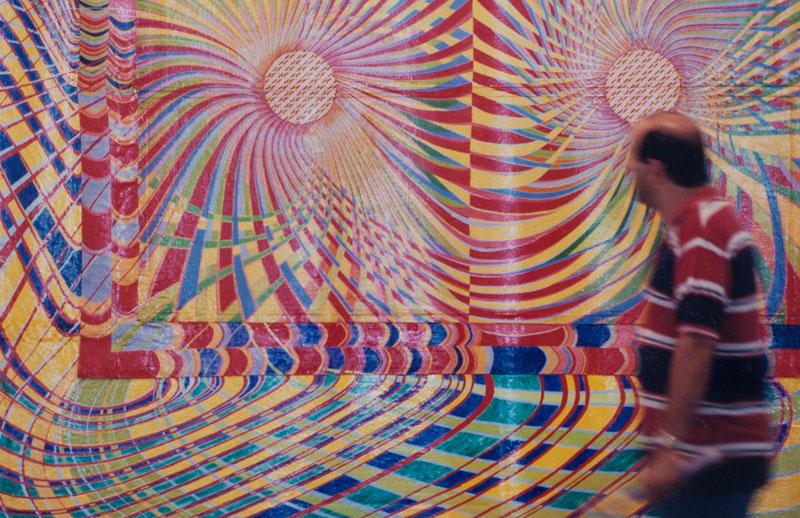 Delson Uchoa, Roi roi, na seção Um e/entre Outro/s - Arte Contemporânea Brasileira no Eixo da Cor