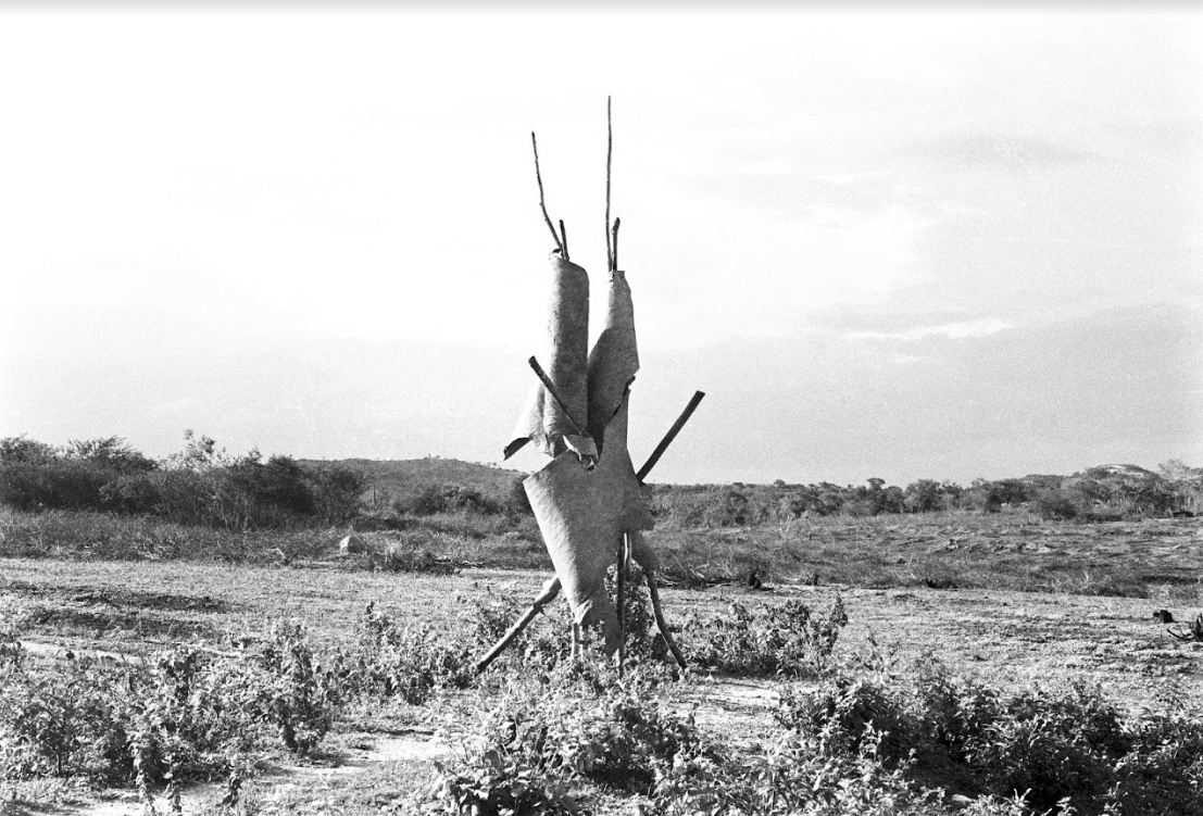 Juraci Dórea, <i>Projeto Terra – Escultura da Tapera</i> , 1982. Foto: Juraci Dórea. Cortesia do artista