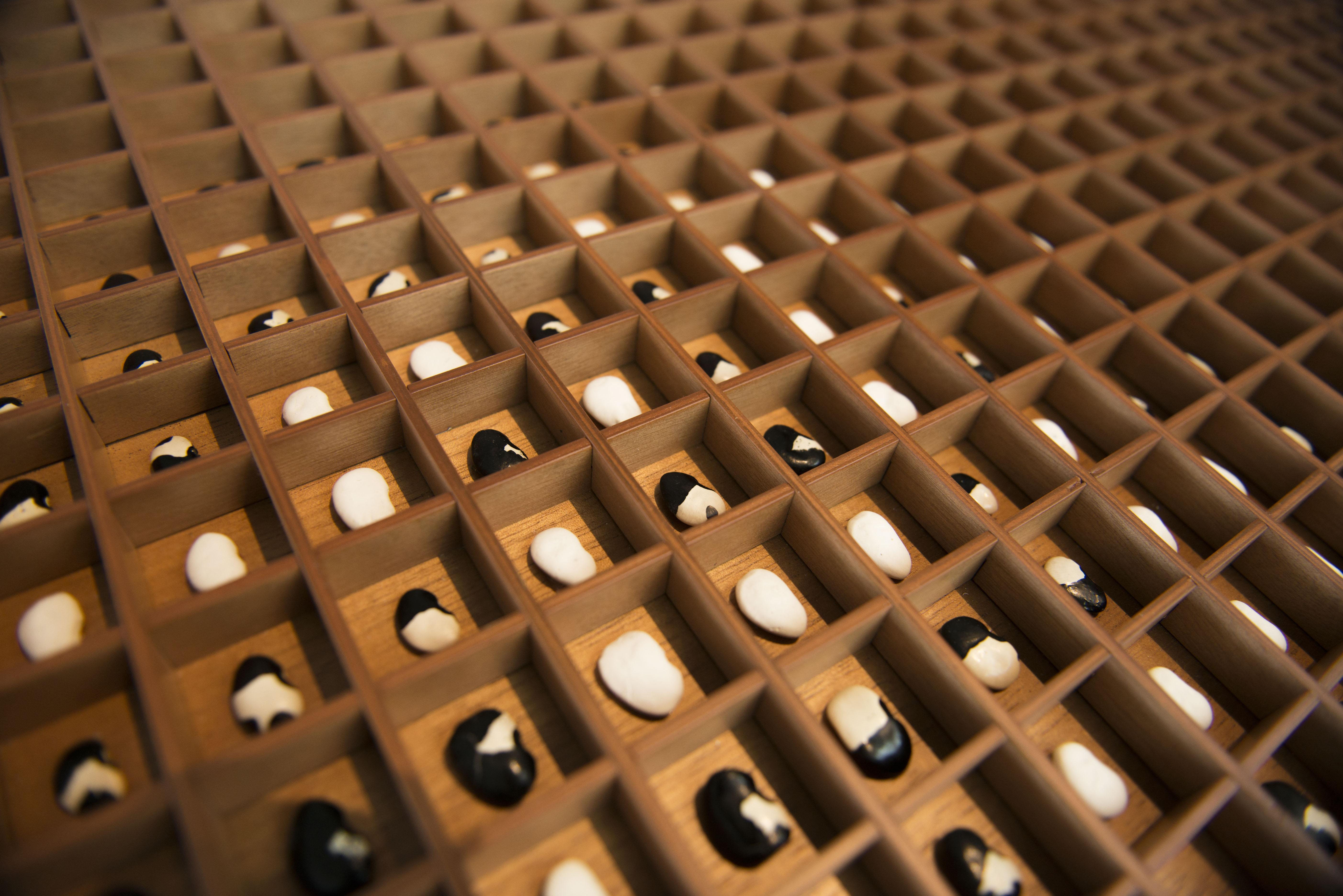 Exhibition view of Ximena Garrido-Lecca at the  34ª Bienal de São Paulo. 08/02/2020. © Levi Fanan / Fundação Bienal de São Paulo