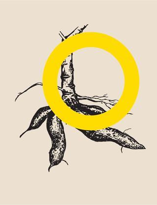 048cce8831 Catálogo 32ª Bienal de São Paulo - Bienal de São Paulo